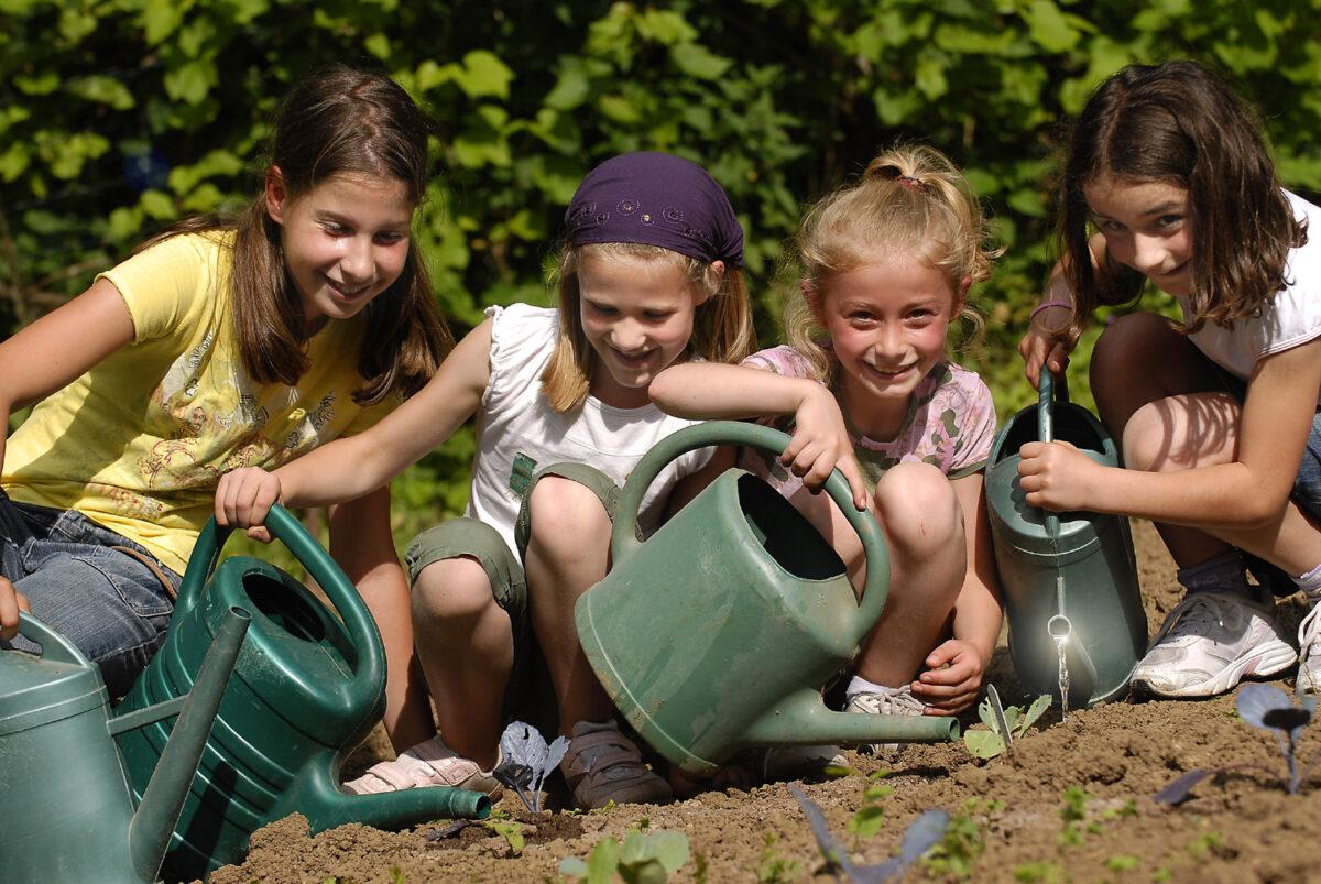Doe mee met Fête de la Nature! Grassroots natuurfestival op 25 en 26 mei