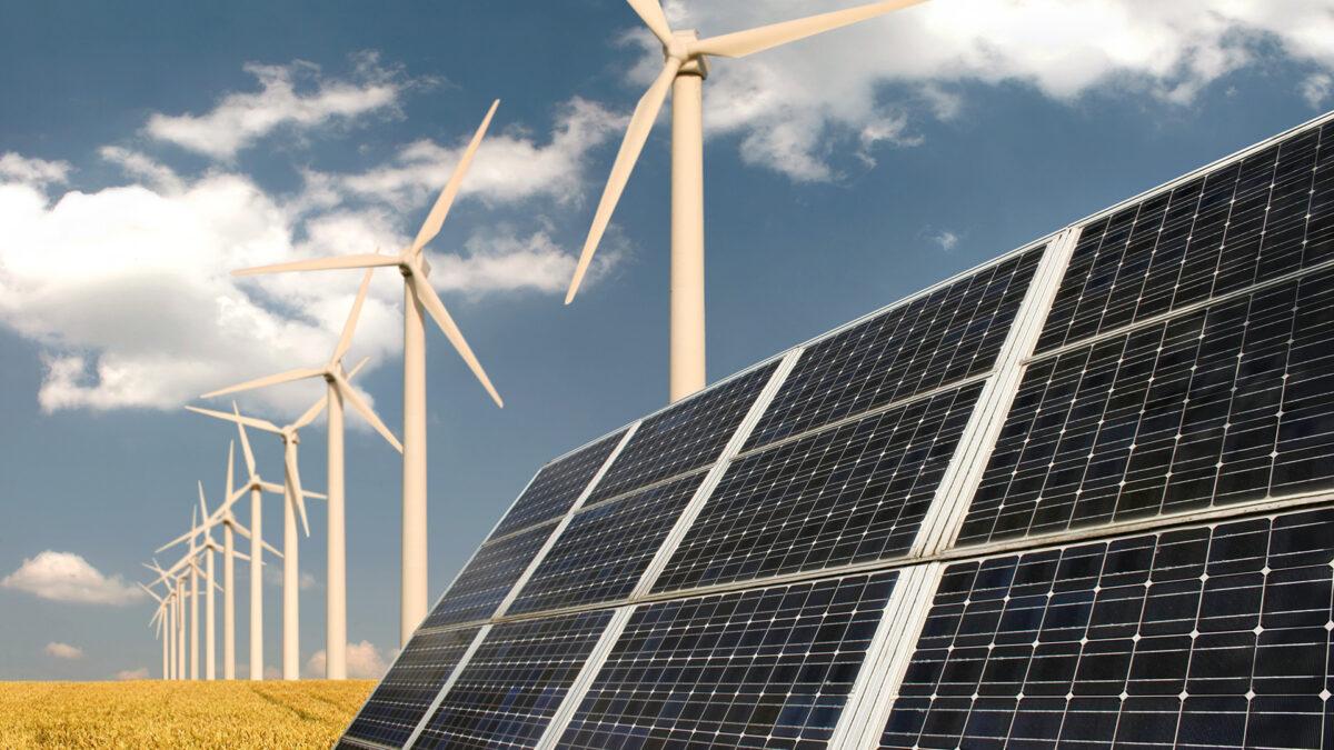 Verbeteren biodiversiteit en ruimte voor duurzame energie belangrijkste provinciale opgaven