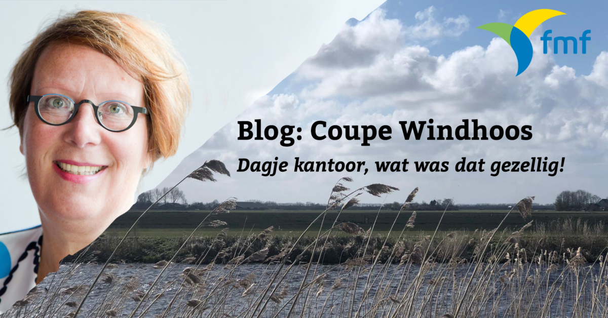 Blog: Coupe Windhoos