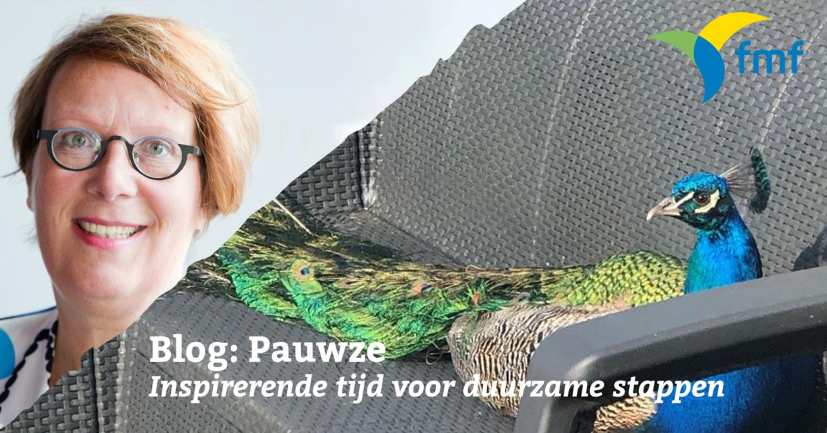 Blog: Pauwze. Inspirerende tijd voor duurzame stappen