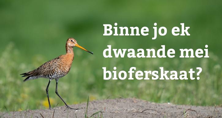 Enquête Biodiversiteitsinitiatieven in Fryslân