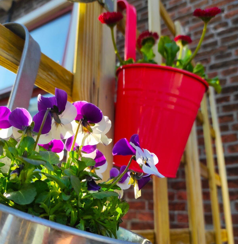 Duurzaam leven: Tuinieren op je balkon